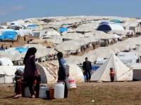 Soekarno Care: Dari Indonesia untuk Suriah