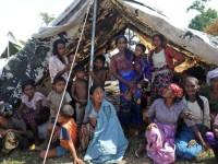 Ratusan Pengungsi Rohingya Ditemukan di Thailand