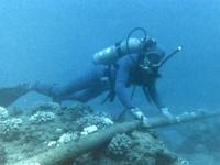 Hindari AS, Brazil Pasang Kabel Bawah Laut ke Eropa