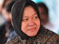 Surabaya Bersih, Kapal Pesiar Merapat