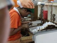 Peraturan Menteri Dituding Bangkrutkan Industri Rokok