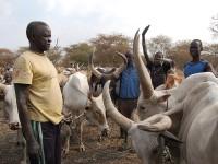 Aksi Perampokan Berdarah Tewaskan 100 Orang di Sudan Selatan