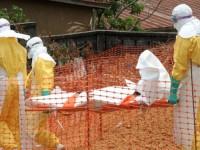 WHO: Ebola Renggut 142 Nyawa di Afrika