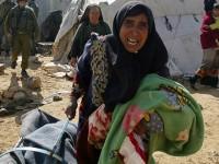 Tentara Israel Jarah Tenda-Tenda Pengungsi Palestina