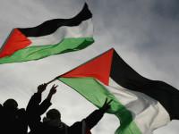 1 Warga Zionis Tewas Diserang Pejuang, Palestina Sambut Gembira