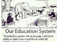 Ambang Batas Nilai, dan Pendidikan Kita Hari Ini