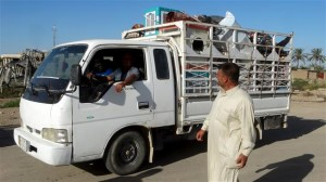 Irak Pulang Kampung