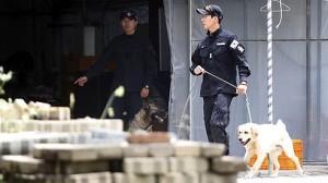 polisi korea