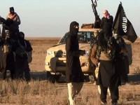 29 Militan ISIS Tewas di Irak