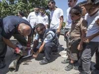 """""""Kubah Besi"""" Tak Berdaya, TV Israel Laporkan 4 Warga Zionis Tewas"""