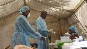 virus ebola2