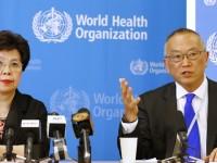 WHO Umumkan Darurat Internasional Wabah Virus Ebola