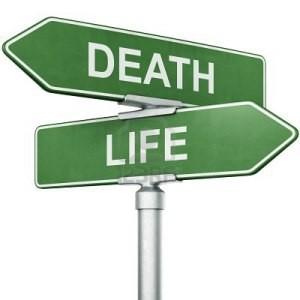 hidup mati