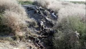 فشل هجوم ثالث لداعش على مطار الطبقة شمال سوريا