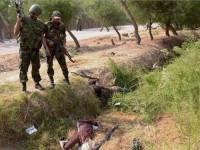 Lagi, Gembong Teroris ISIS Tewas di Tangan Pasukan Suriah