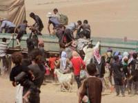 Tragedi Sinjar, PBB Nyatakan ISIS Perkosa Gadis Remaja dan Anak-Anak Kecil