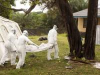 AS Temukan Kasus Pertama Virus Ebola
