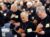 Sinoda Katolik Cenderung Dukung Homoseksual