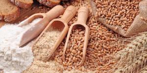 impor-bahan-mie-instan-tinggi-gandum-nuklir-bisa-jadi-pilihan