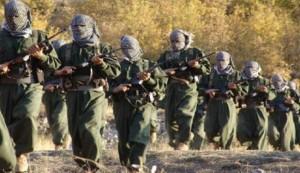 طليعة المقاتلين الاكراد العراقيين تصل الى تركيا