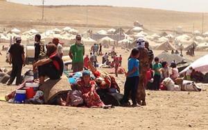 pengungsi irak