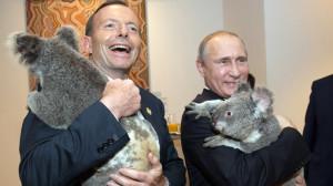 putin abbott koala