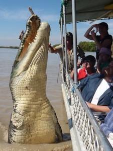 croc-brutus