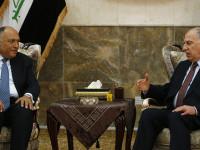 Menlu Mesir dan Wapres Irak