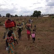 pengungsi nigeria