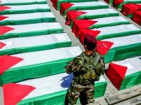 Israel Curi Organ Tubuh Syuhada Palestina