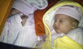 bayi adopsi