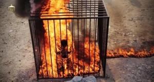 isis bakar manusia