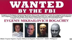 wanted bogachev