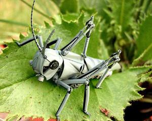 robot serangga