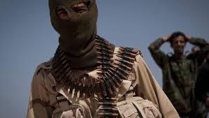 terotis libya