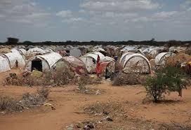 kamp pengungsi dadaab