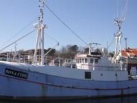 Abaikan Ancaman Israel, Kapal Kemanusiaan Swedia Siap Terobos Gaza
