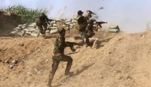 القوات المشتركة العراقية تتوغل الى مركز بيجي