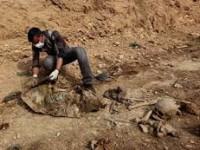 67 Warga Yazidi Korban Penguburan Hidup-Hidup ISIS Akhirnya Dikebumikan Secara Layak