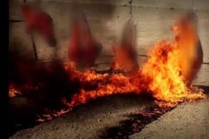 isis bakar pejuang irak