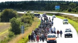 pengungsi denmark