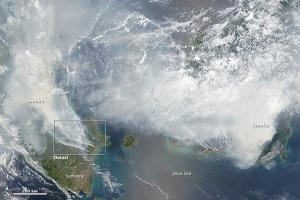 pic http://earthobservatory.nasa.gov/