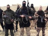 Ramadi Lepas, ISIS kehilangan 50% Wilayah di Irak