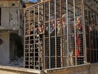 ISIS, dan Manusia di Dalam Sangkar