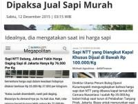 Berita Nyeleneh Republika Tentang Jual Beli Sapi NTT