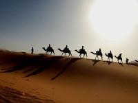 Perlukah Belajar Islam di Timur Tengah?