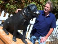 Penculikan Anjing Marak Terjadi di Brasil