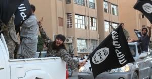 ISIS-MEE