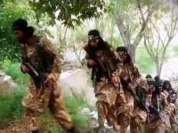 Rusia: 10.000 Anggota Teroris ISIS Bercokol di Afghanistan