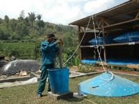 Alumni ITB ini Olah Kotoran Sapi Jadi Biogas